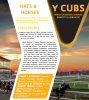 YCUBS - YMCA Children's Unified Benefits and Services: 2nd Annual Hats and Horses Gala